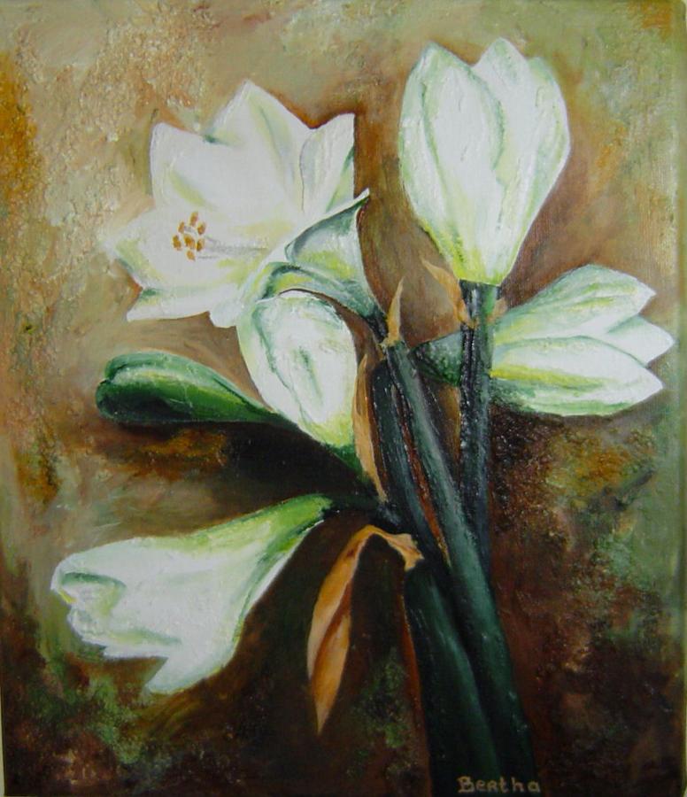 witte Amaryllis, acryl op doek